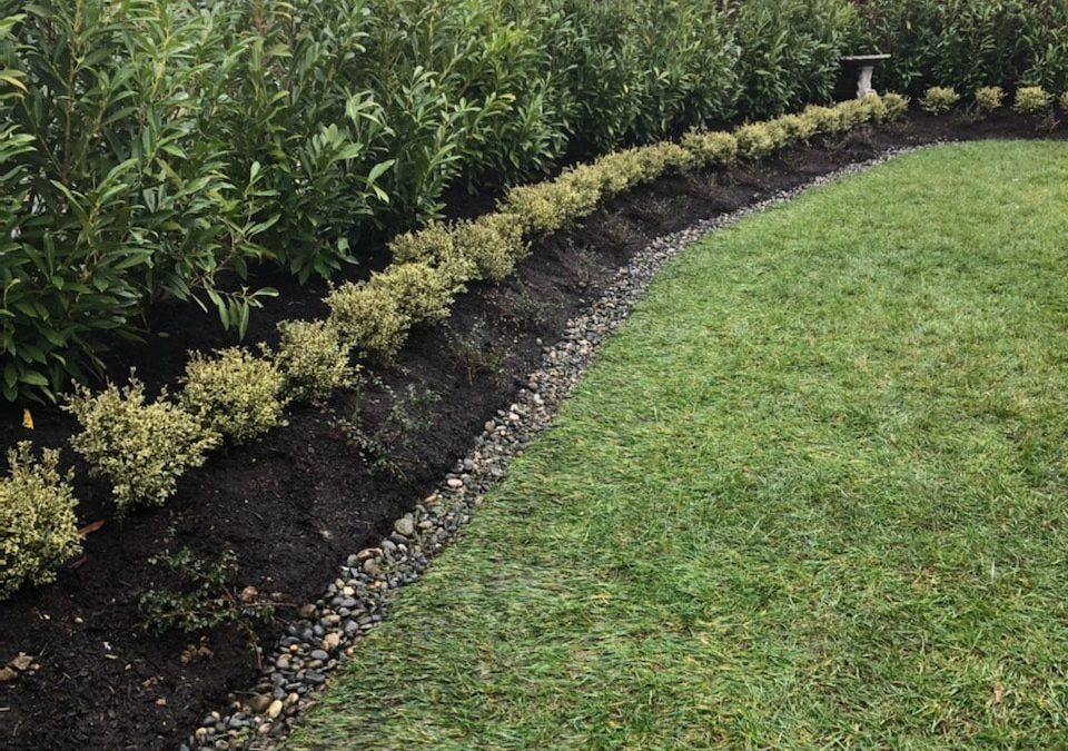 Got water problems? French drains can help